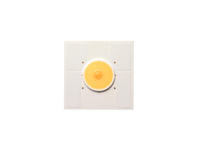 新光源 LED「サニーサイドアップ」(登録商標第6343157号)