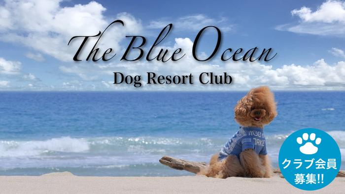 ザ・ブルーオーシャン ドッグリゾートクラブ メンバー募集中