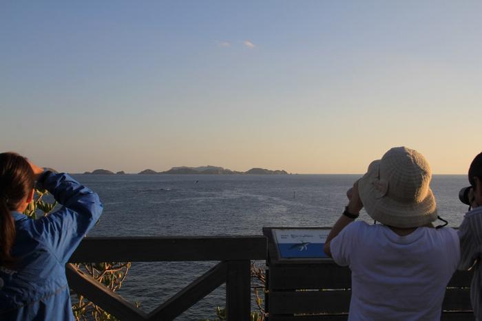 鮫ケ崎展望台 写真提供:梅野ひろみ