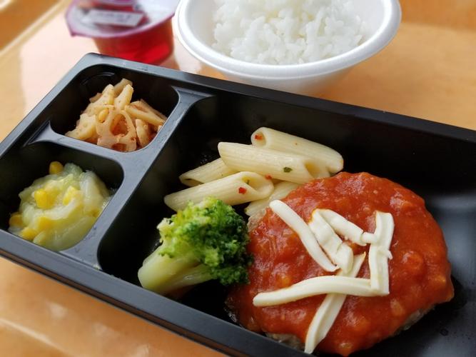 常菜食の冷凍弁当一例