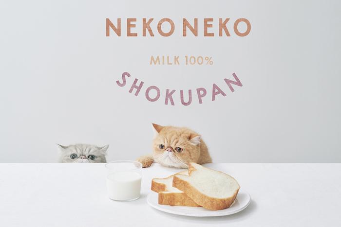 2月22日(猫の日)より数量限定】ねこの形の高級食パン専門店「ねこねこ ...