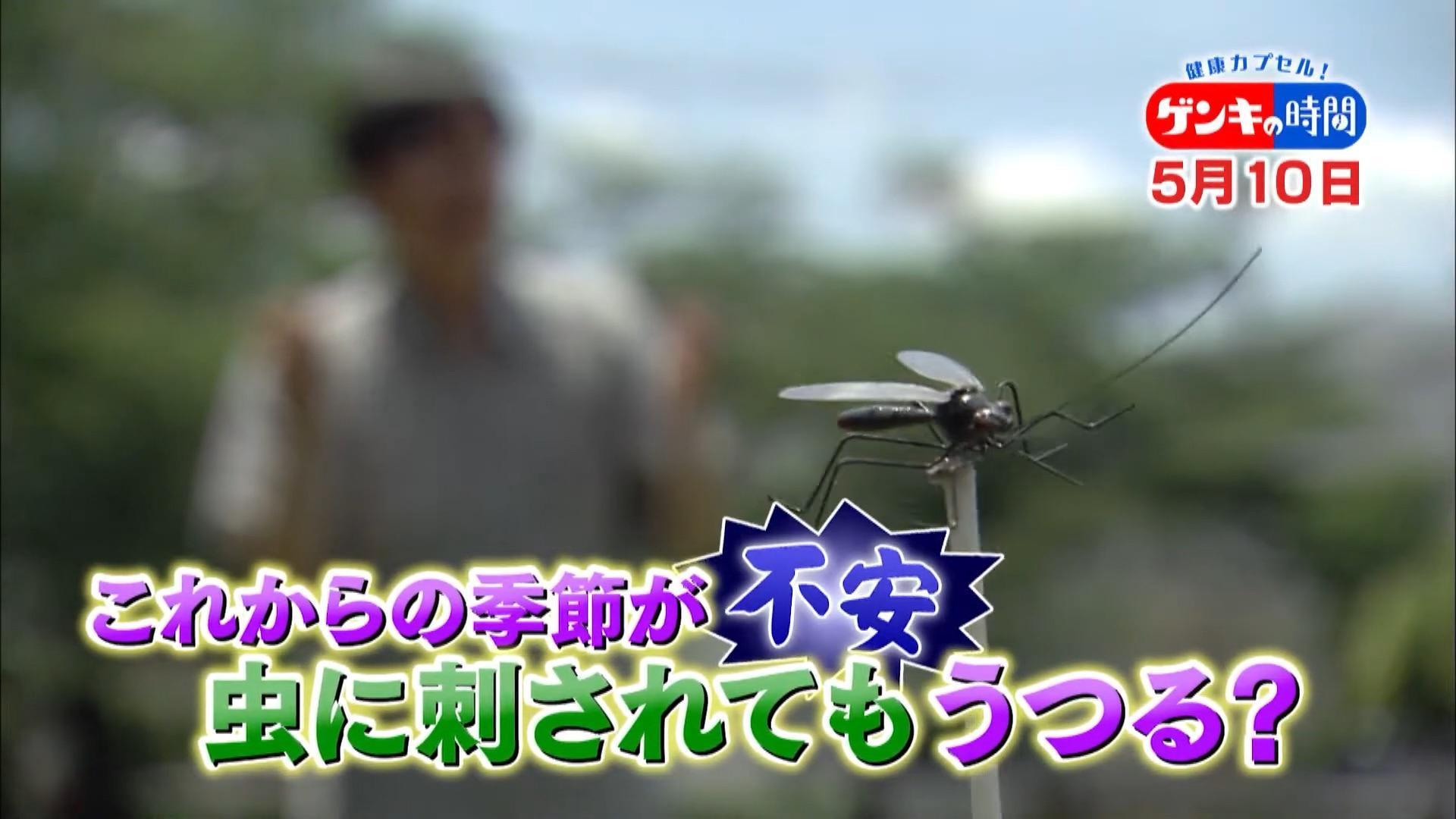 コロナ 蚊 新型