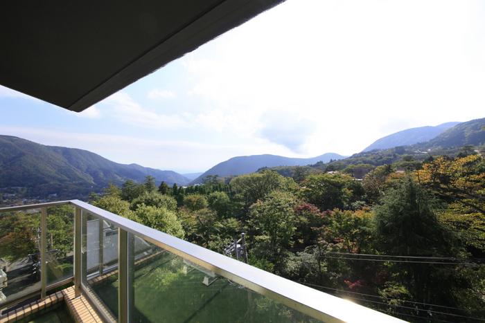 箱根の雄大な自然を望む